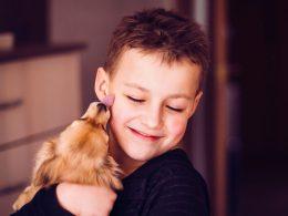 Köpekler ve Çocuklar